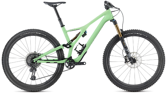 Buy Specialized S-Works Stumpjumper 29 Men's Mountain Bike  Online at thetristore.com