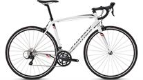 Buy Specialized Allez E5 Sport Road Bike 2016 Online at thetristore.com